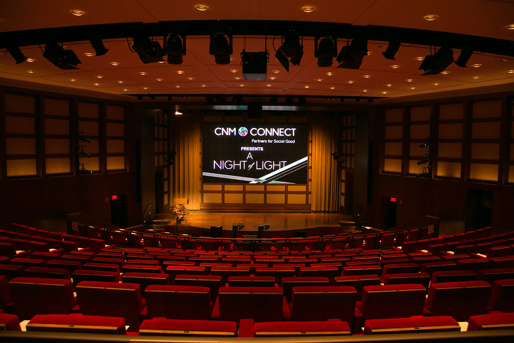 A_Night_Of_Lights_2017-0081